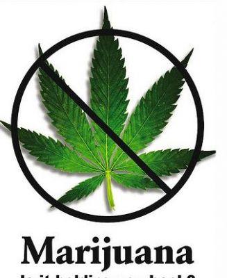 嗜好用大麻 -なぜアメリカでは大麻が合法化され …